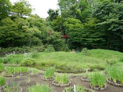 藤田記念庭園8.jpg