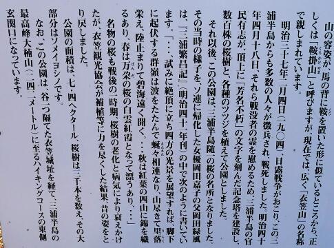 衣笠山公園6.jpg