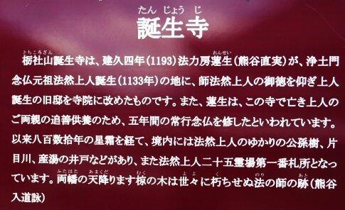 誕生寺.jpg