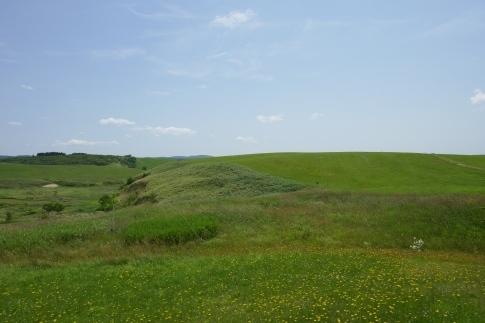 豊富の大牧草地3.jpg