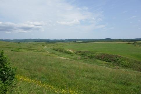 豊富の大牧草地5.jpg