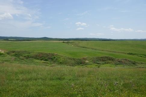 豊富の大牧草地6.jpg