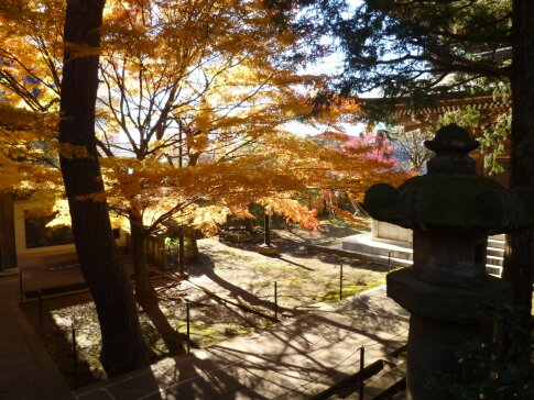道場寺の紅葉5.jpg