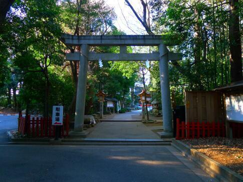 道野辺八幡神社.jpg