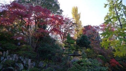 達磨寺 紅葉201301.jpg