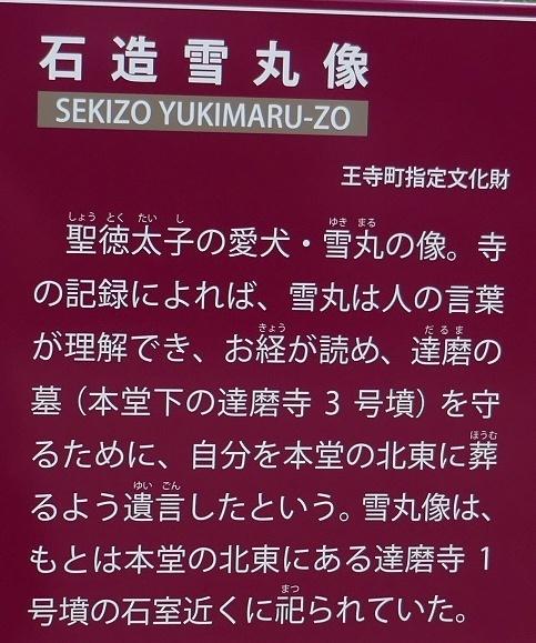 達磨寺雪丸塚2.jpg