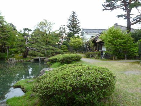 酒井氏庭園2.jpg