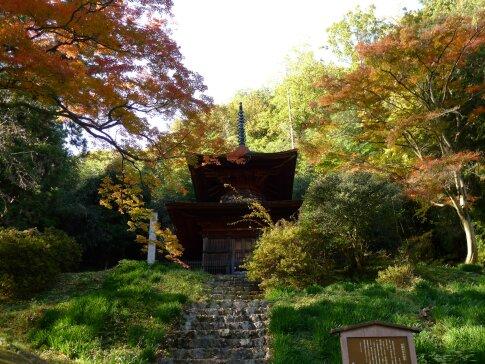 金鑚神社 紅葉201402.jpg