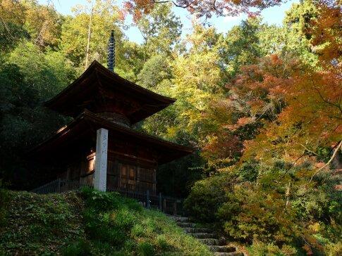 金鑚神社 紅葉201404.jpg