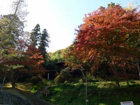 金鑚神社 紅葉201401.jpg