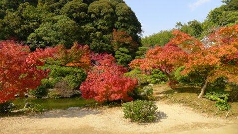 長府庭園2.jpg