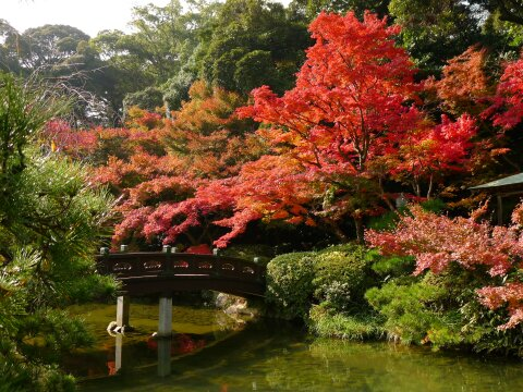 長府庭園7.jpg