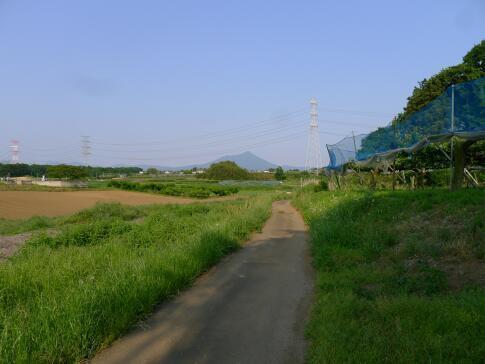 関城趾 坑道3.jpg