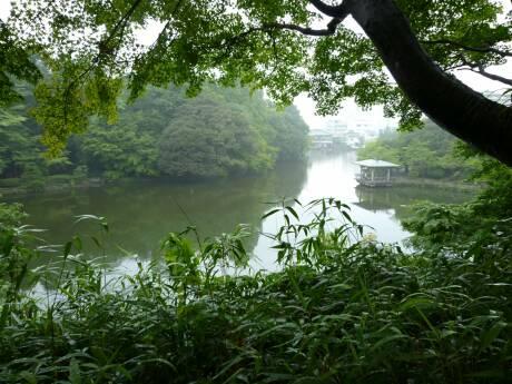 高岡古城公園2.jpg