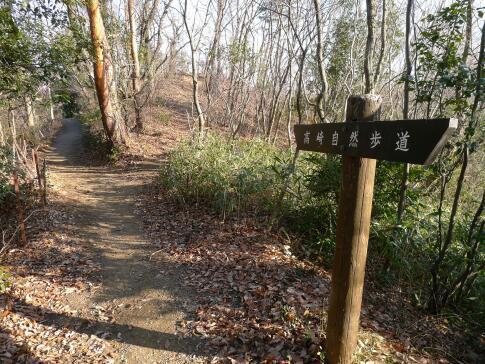 高崎自然歩道2.jpg