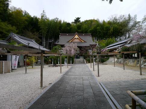 高徳院2.jpg