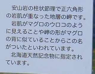 鮪の岬2.jpg