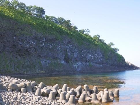 鮪の岬3.jpg
