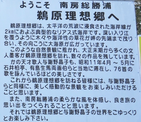 鵜原理想郷2.jpg