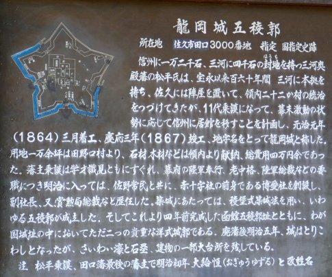 龍岡城 桜9.jpg
