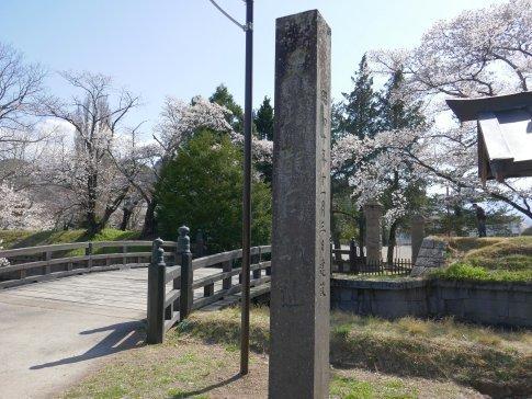 龍岡城 桜9a.jpg