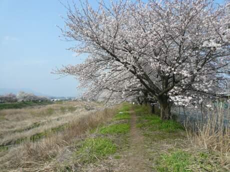 sirakawabasi.jpg