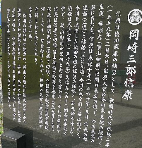 tokugawanobuyasu.jpg
